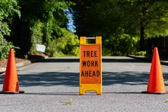 Tree Work Ahead Sign with Two Traffic Cones. On each side Stock Image