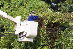 Tree Worker evaluating the job from a bucket truck. Removing branches - what out for that electric line Stock Images