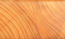 Tree year rings Stock Photos
