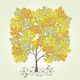 Tree with yellow leafage. Vector. Trees with yellow leaf  rendered Stock Photography