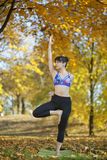 Tree yoga pose royalty free stock photos