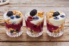 Tree yogurt desserts with berries and muesli. Stock Image