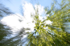 Tree zoom background Royalty Free Stock Images