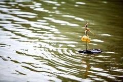 Treebarkbåt arkivfoto