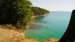 treed峭壁的美好的风景在黑海的天蓝色的水的旁边自在阳光下的白天 Tuapse,俄罗斯 免版税库存图片