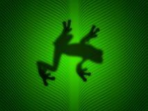 Treefrog imagenes de archivo