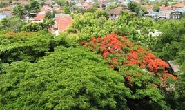 Treeful-Dorf Stockfotografie