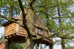 Treehouse ως σπίτι διακοπών Στοκ εικόνα με δικαίωμα ελεύθερης χρήσης