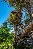 Treehouse Στοκ Εικόνες