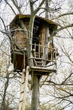 Treehouse Royaltyfria Bilder