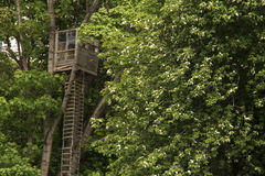Treehouse Royalty-vrije Stock Afbeeldingen
