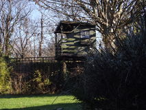 Treehouse Stock Afbeelding