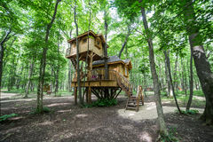 Treehouse i mest forrest Royaltyfri Bild