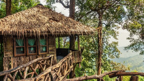 Treehouse at national park with mountain Royalty Free Stock Photo