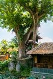 A Treehouse in Pura Taman Saraswati Stock Image