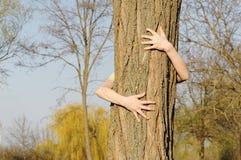 treehugger Royaltyfri Fotografi