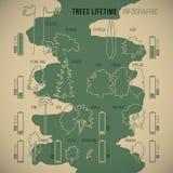 Treeinfographic stock de ilustración