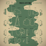 Treeinfographic Stock Photography