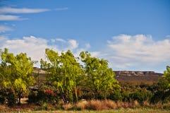 Treeline nella valle del Chubut fotografia stock