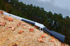 Treeline rifle Stock Photography