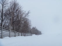 Treeline in snowstorm Lake Superior Winter Nature Photograph Outdoor. Snowstorm along tree line against Lake Superior in winter with fenceline nature photograph Royalty Free Stock Photo