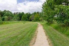 Treelined Footpath w Szkockiego las Obraz Royalty Free