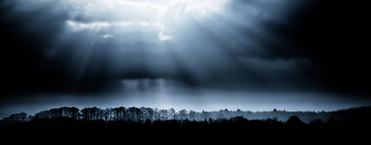 Treelines landscape with sunrays Stock Images