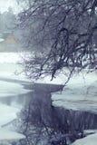Treen förgrena sig att hänga över den smältande floden Royaltyfria Foton