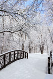 Vinterplatsen med överbryggar Royaltyfri Bild