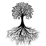 Treen med rotar vektor illustrationer