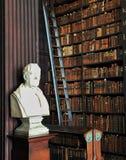 Treenighethögskolaarkiv Dublin Ireland royaltyfria bilder