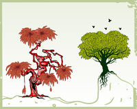 Trees. Additional vector format Illustrator 8 eps Stock Photos