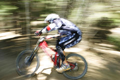 Through the trees. Mountin biking racing in Southern California Stock Photos