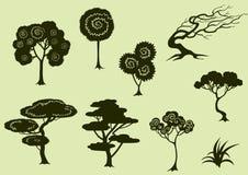 Trees Stock Photography