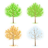 Trees. Stylized trees set. vector  illustration Stock Photography