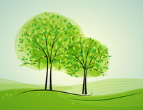 Trees. Landscape with deciduous trees in the background Stock Photos