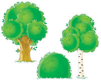 Trees. Isolated clip-arts / children's book illustrations for your design Royalty Free Stock Photo