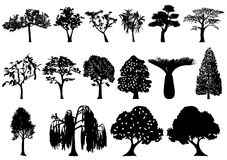 Trees. Illustration of trees, black, white Royalty Free Stock Photo