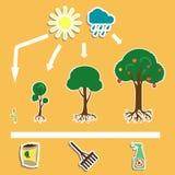 Trees3 Immagini Stock Libere da Diritti