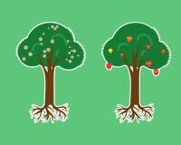 Trees5 Fotografia Stock Libera da Diritti