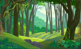 Trees across green fields in a forest. Highly detailed vector illustration of a green, dense tropical forest Royalty Free Stock Photography