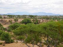 Beautiful landscapes of Africa Stock Image