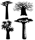 Trees of Africa - vector. Silhouettes of various African trees and bushes - vector Stock Image