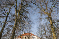 Trees against a blue sky, red-tiled roof covered with snow; Poland Royalty Free Stock Images