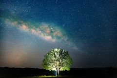 Trees against starry sky with Milky Way Long exposure Photograph with grain. Space background. Night landscape with alone trees on the mountain at Thung Ka stock photos