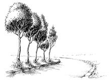 Trees alley sketch. Trees alley in the park sketched wallpaper Stock Photo