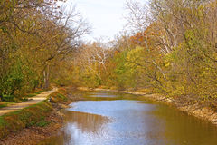 Trees along the canal in autumn foliage. Royalty Free Stock Photography