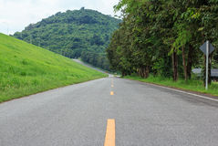 Trees along a empty road. Green fields Trees along a empty road Royalty Free Stock Image