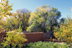 Trees along the Hillside. Numerous trees with autumn colors line the hillside with and adobe building among them Stock Photos