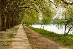 Trees along the river side in Ponte de Lima Royalty Free Stock Image